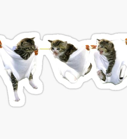 Cats OnLine Sticker