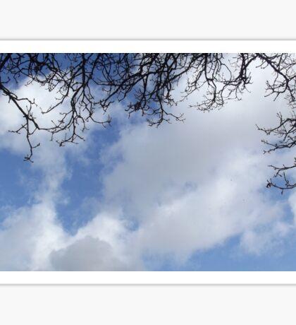 Tree and sky Sticker
