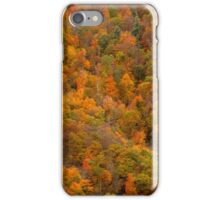Hillside Colors - Blue Ridge Parkway iPhone Case/Skin