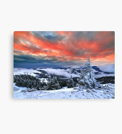 Lonely Tree Against a Winter Mountain Sunrise Canvas Print
