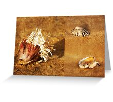 Natures Sculptures Greeting Card