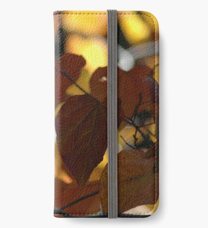 Toolangi Forest Pansy 2 iPhone Wallet/Case/Skin