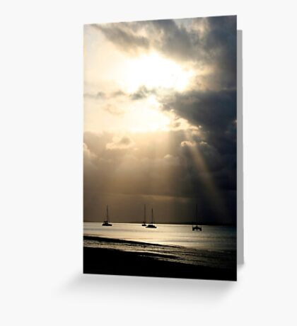 Kingfisher Bay Greeting Card