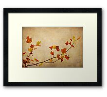 Nature minimalist Framed Print