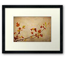 Nature minimalist Framed Print