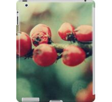 Red Winter Berries iPad Case/Skin