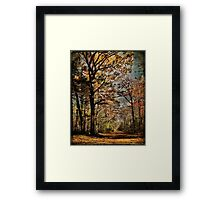 As the Season Passes Framed Print