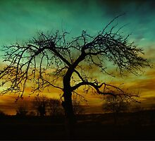 Mood tree  by franceslewis