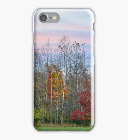 Autumn Wood at Sunset iPhone Case/Skin