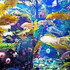Aquarium YVR by Lesliebc
