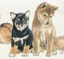 Shiba Inu Puppies by BarbBarcikKeith