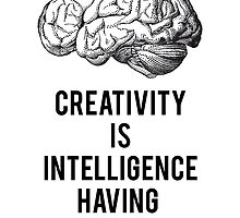creativity is intelligence having fun by beakraus