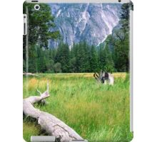 Yosemite Valley from valley floor iPad Case/Skin