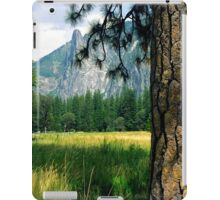 Yosemite Valley Old Tree iPad Case/Skin