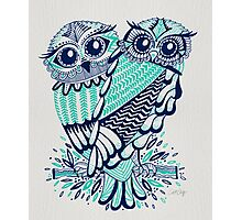 Owls – Turquoise & Navy Photographic Print