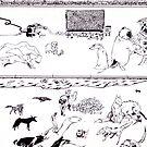 Dog Run by Brendan Coyle