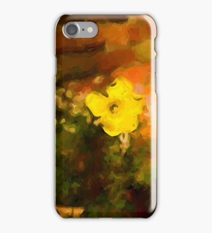 Yellow Buttercup in Golden Light iPhone Case/Skin