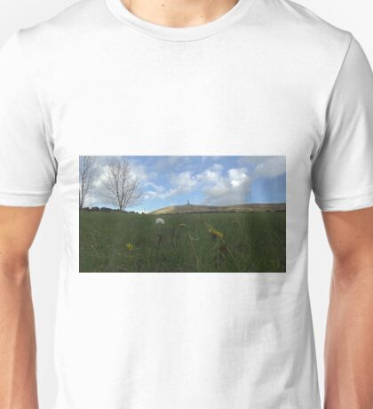 Flowers and stoodley pike Unisex T-Shirt