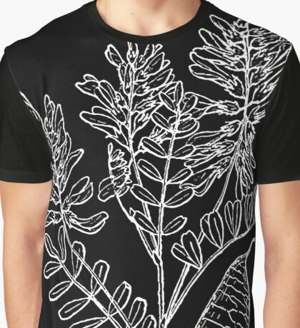 Britton And Brown Illustrated flora of the northern states and Canada 0211 Astragalus neglectus BB 1913 Graphic T-Shirt