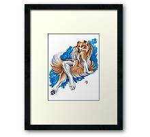 Collie Girl Framed Print