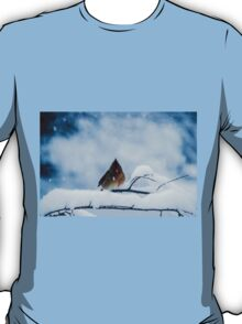 Winter Blues T-Shirt