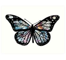 Butterfly Collections Art Print