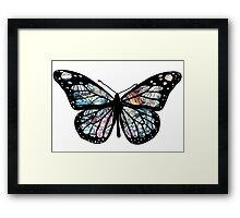 Butterfly Collections Framed Print