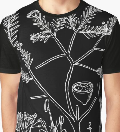 Britton And Brown Illustrated flora of the northern states and Canada 0456 Corema conradii BB 1913 Graphic T-Shirt