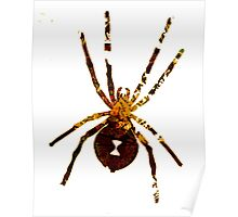 Arachnophilia-Dark Poster
