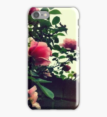 Roses on the Wall iPhone Case/Skin