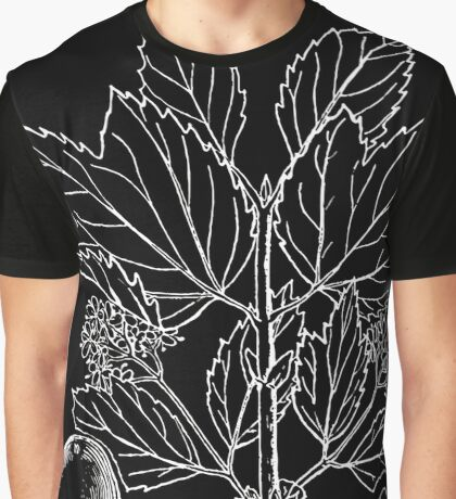 Britton And Brown Illustrated flora of the northern states and Canada 1581 Viburnum edule BB 1913 Graphic T-Shirt