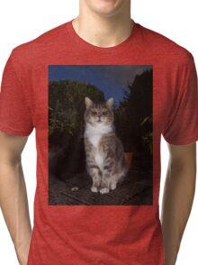 Tabby cat sat on patio at night Tri-blend T-Shirt