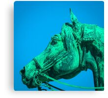 Bronze Horse Canvas Print
