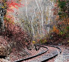Autumn Tracks by Mary Carol Story