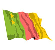 Old Cameroon Flag Photographic Print