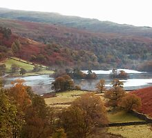 Rydal Water in Autumn by Stephen Read