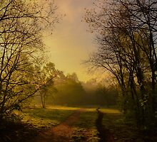 Take Nature with you by J. Danion