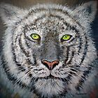 White Tiger by Rich Summers