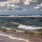 Take the Sea with you by Joey Kuipers