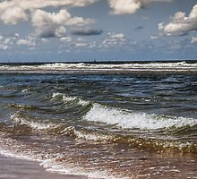 Take the Sea with you by J. Danion