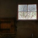 5.11.2014: From Abandoned Cowshed by Petri Volanen