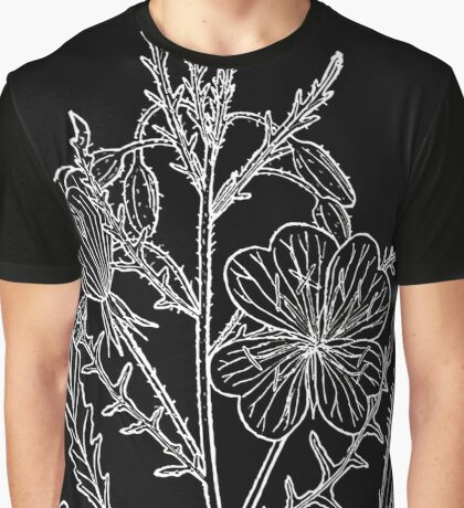 Britton And Brown Illustrated flora of the northern states and Canada 1021 Oenothera albicaulis BB 1913 Graphic T-Shirt