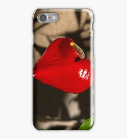 A Glossy Heart Flower for My Valentine iPhone Case/Skin