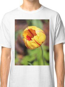 Striped Tulip Classic T-Shirt