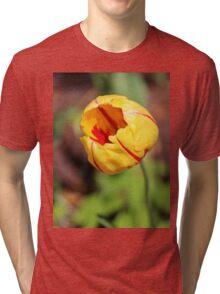 Striped Tulip Tri-blend T-Shirt