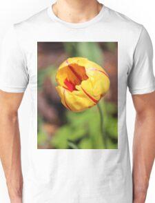 Striped Tulip Unisex T-Shirt