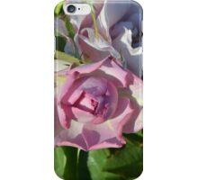 Beautiful Heavenly Rose iPhone Case/Skin
