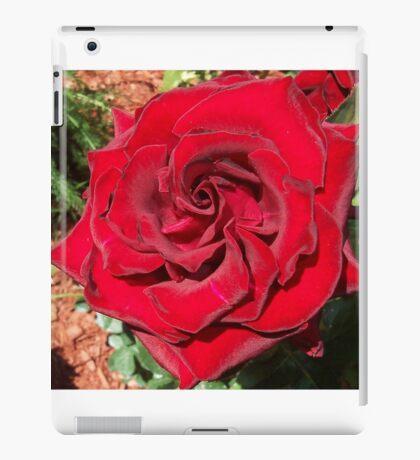 Red Velvet iPad Case/Skin