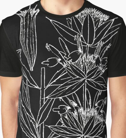 Britton And Brown Illustrated flora of the northern states and Canada 0992 Monarda pectinata Nutt. pony beebalm   Britton N.L. and A. B Graphic T-Shirt