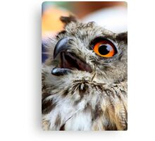 Give me chicks! Canvas Print